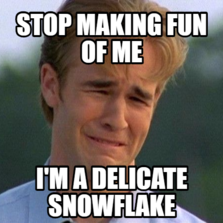 Stop making fun of me I'm a delicate snowflake