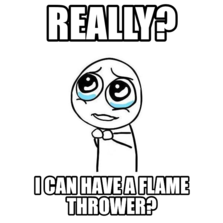 Really? I can have a flame thrower?