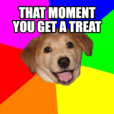 that moment you get a treat