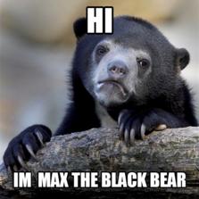 HI  IM  MAX THE BLACK BEAR
