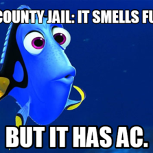 The county jail: It smells funny. But it has AC.