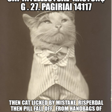 Aristocat Kaštonų g . 27. pagiriai 14117 then cat licked by mistake  risperdal then pill fall off   from handbags of his mistress