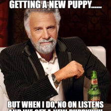 I DON'T ALWAYS SAY NO TO GETTING A NEW PUPPY...... BUT WHEN I DO, NO ON LISTENS AND WE GET A NEW PUPPY!!!!!!