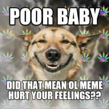 poor baby did that mean ol meme hurt your feelings??