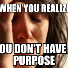 When you realize   You don't have a purpose