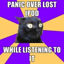 Panic over lost ipod