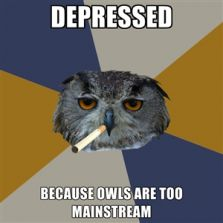 Owls are too mainstream