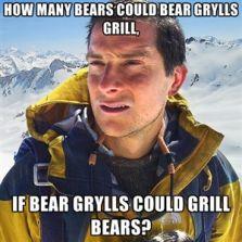 How many bears