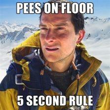 Pees on floor