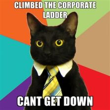 Climbed the corporate ladder