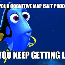 when your cognitive map isn't processing so you keep getting lost