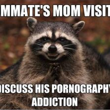 Roommate's mom visiting