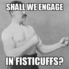 Image result for fisticuffs meme