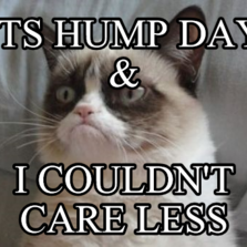 ITS HUMP DAY &  I COULDN'T CARE LESS