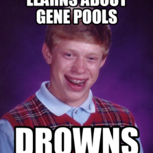 learns about gene pools drowns