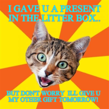 I GAVE U A PRESENT IN THE LITTER BOX.. BUT DON'T WORRY  ILL GIVE U MY OTHER GIFT TOMORROW!