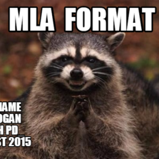 MLA format????????????????????(characters)?