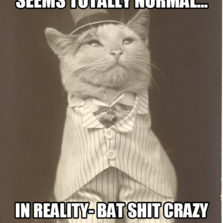 seems totally normal... in reality- bat shit crazy