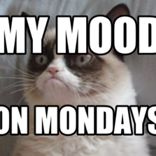 my mood on Mondays