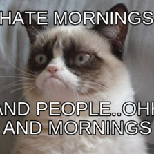 i hate mornings and people..ohh and mornings