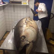 One huge tuna