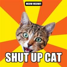 meow meow!! SHUT UP CAT
