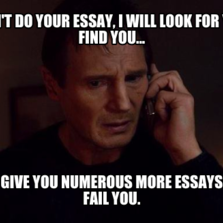 Who will do your essay for you