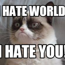 I HATE WORLD! I HATE YOU!