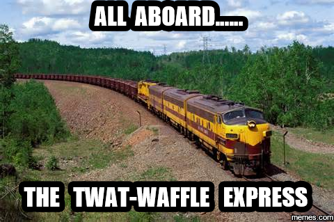 Image result for twatwaffle memes